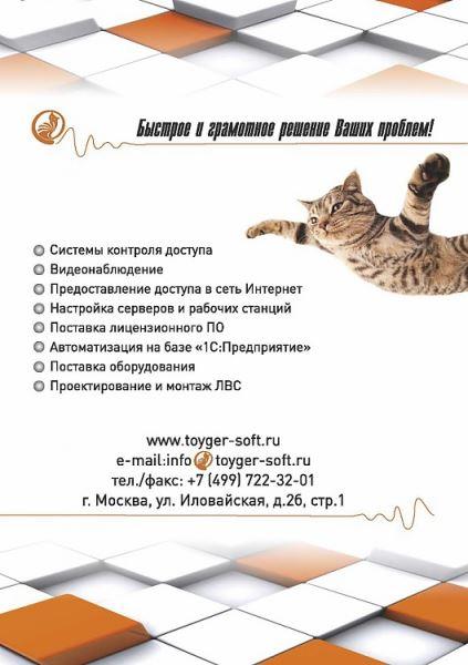 https___docviewer.yandex.ru_for_5170418_Stranica_2_96560.750